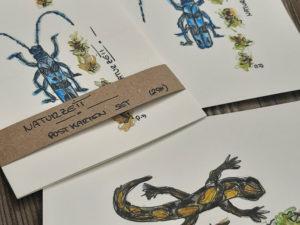 Postkartenset Naturzeit